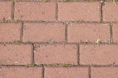 A small brick road. Texture of a small brick road stock photography