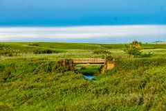 Small bridge in a field. Wooden Rockyford County, Alberta, Canada Stock Photography