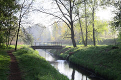 Small bridge in forest Royalty Free Stock Image