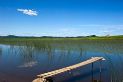 Small bridge on the lake overgrown with grass. Stock Image
