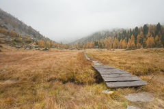 Small bridge long a path in the meadow at fall Royalty Free Stock Photography