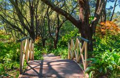 Small bridge in the middle of the garden. Small bridge in the middle of the colorful garden near Skyhigh restaurant at mount Dandenong, Victoria, Australia royalty free stock images