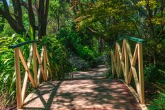 Small bridge in the middle of the garden. Small bridge in the middle of the colorful garden near Skyhigh restaurant at mount Dandenong, Victoria, Australia royalty free stock photos