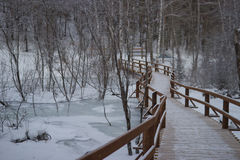 Small bridge over the creek, beautiful winter landscape royalty free stock photo