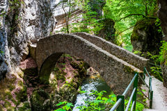 Small bridge over river at Gorges de l'Areuse Stock Images