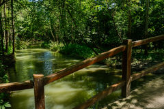 Small bridge over rivulet through woods in sunny summer Royalty Free Stock Photo