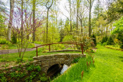 Small bridge over a stream. Surrounded by greenery stock photos