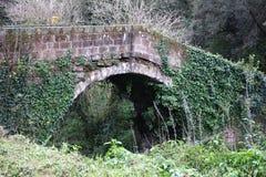 Old Roman  bridge Royalty Free Stock Photo