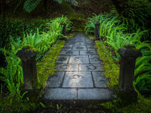 Small bridge in the Terra Nostra Garden Stock Photos