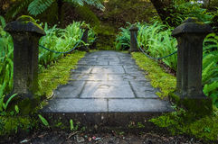 Small bridge in the Terra Nostra Garden. In Furnas,  on Sao Miguel island, Azores, Portugal Royalty Free Stock Photo