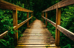 Small bridge on a trail in Codorus State Park, Pennsylvania. Stock Photos