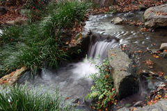 Small Brook. A small brook with autumn leaves royalty free stock photos