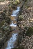 Small brook at the casino park in spring Stock Photography