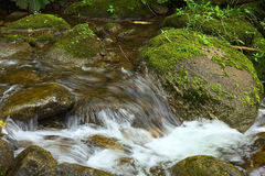 Small Brook in Ecuador Stock Images