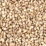 Small brown naturally rock pebbles textured Stock Photos