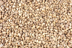 Small brown naturally rock pebbles textured Stock Image