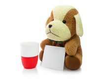 Small brown puppy with red mug and card isolated on white backgr Stock Photos