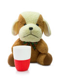 Small brown puppy with red mug isolated on white background. Stock Photos