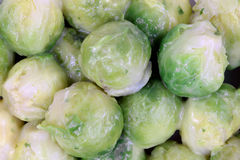Small Brussel Sprouts Up Close Stock Photography
