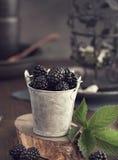 Small bucket of blackberry toned Stock Photo