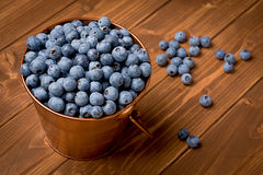 Small Bucket with Blueberries Royalty Free Stock Photography