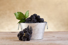 Small bucket with fresh blackberries Royalty Free Stock Photo