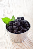 Small bucket of fresh blackberries Royalty Free Stock Image