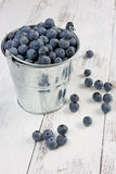 Small Bucket Full of Blueberries Royalty Free Stock Photos