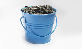 Small bucket full with sunflower Stock Photos