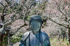 Small Buddha statue on blooming sakura background. Kamakura. Japan stock image