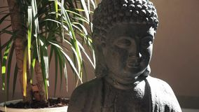 Small Buddha statue and palm tree in the background. Push in shot stock footage