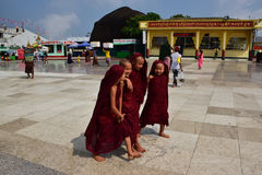 Small Buddhist Monk laughing and talking seem to be happy with simple life Royalty Free Stock Photo