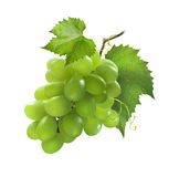 Small bunch of green grapes isolated on white background Stock Photo