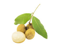 Small bunch of longan, dimocarpus, with its leaves isolated over white Stock Photo