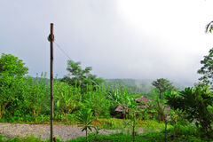 Small bungalow among green season and low level cloud Stock Photo