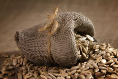Small burlap sack with sunflower seeds Royalty Free Stock Images