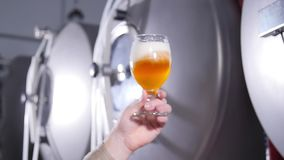 Small business and manufacturing concept. Brewers testing beer at brewery
