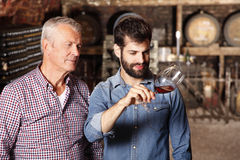 Small business. Portrait of winemakers tasting the new wine. Portrait of young sommelier and senior vineyards owner standing in cellar and consulting. Small Stock Image