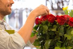 Florist or seller setting red roses at flower shop royalty free stock images