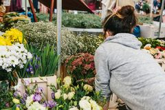 A small business for selling flowers. Street shop. A young girl is a salesman doing work. There are different kinds of. Flowers on the counter Royalty Free Stock Photography