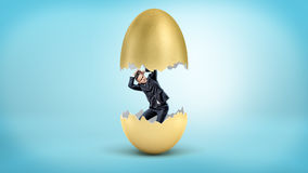 A small businessman revealed as just hatched from inside a cracked golden egg. Stock Images