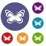 Small butterfly icons set Stock Photo