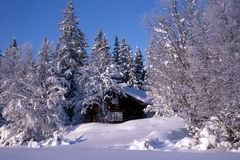Small cabin Surrounded by snow trees Royalty Free Stock Photo