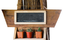 Small cactus and blackboard Stock Images