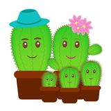 Small cactus family in a pot. Stock Photo