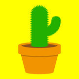Small cactus in pot. Small cactus in orange pot vector illustration