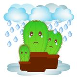 Small cactus in a pot. Stock Image