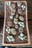 Small Cactus in square pot Stock Image