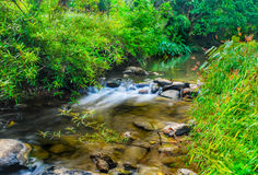 The River in the Sri Sat Cha Na Lai national park landscape, Sukhothai, Thailand.  Stock Images