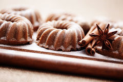 Small cake. With gingerbread spices - sweet food Stock Images